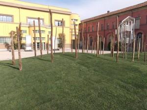 la Vigna - installazione di Land art