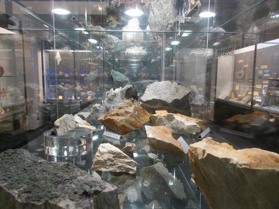 La vetrina mineralogia della collezione Giampaolo Piccoli